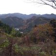 秋の裏山から