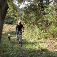 犬と走る裏山トレールの秋