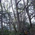 栗山林道上部2