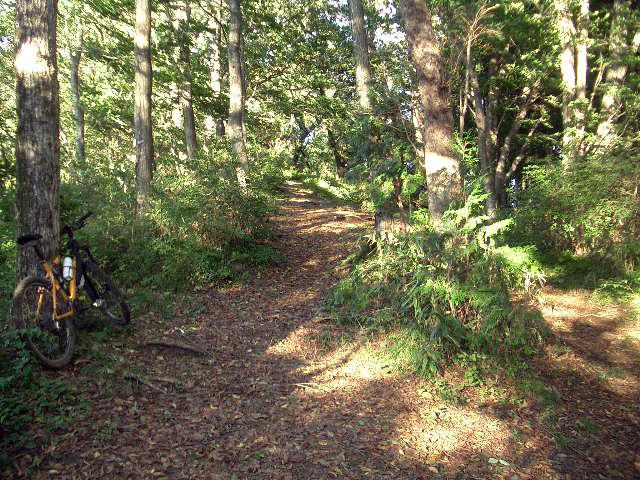 高山不動奥の院への道2