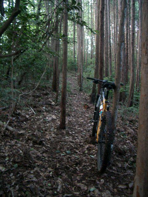 高山不動への道