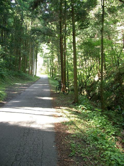 長沢沿いの道