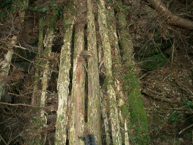 朽ちた木橋