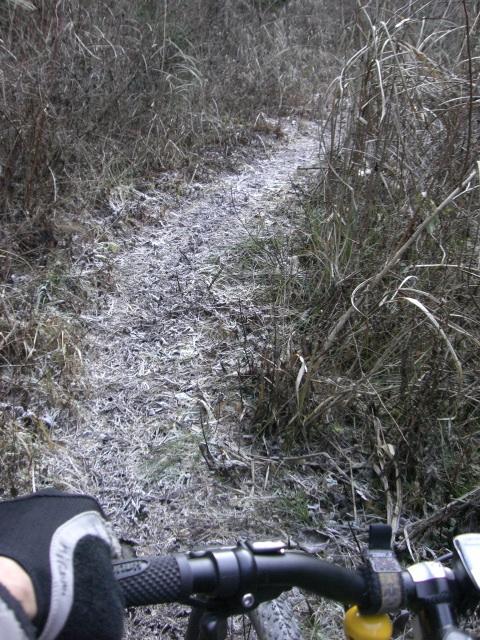 霜降りのトレール