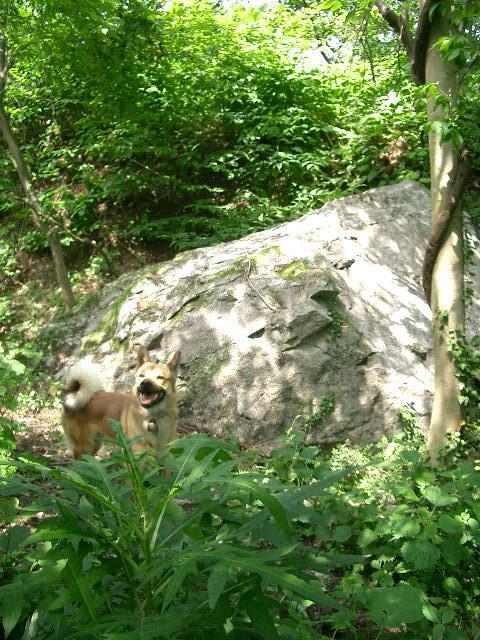 プロメテウスの岩