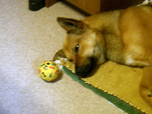 眠くなるボール
